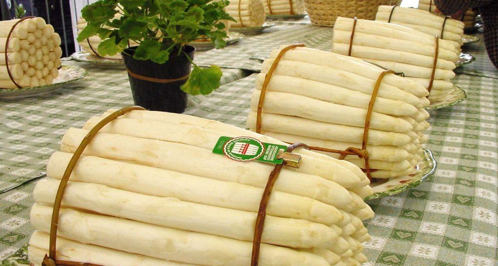 Da pianta officinale a prelibatezza culinaria: questa è la storia dell'asparago di Bassano